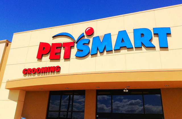 Closing Out Our PetSmart Long Call